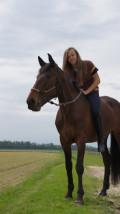 manège couvert, équitation, 77