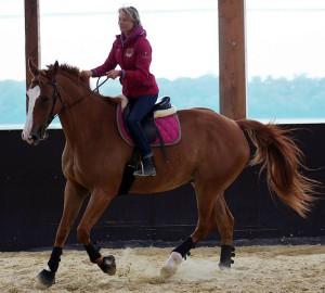 Solène Le Mignon, monitrice d'équitation