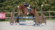 cours d'équitation, 77